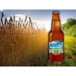 Trampeøl 5,0% (Amber Ale) fra Stevns Bryghus.  Den var ikke god. Kedelig og fesen.  http://www.ratebeer.com/beer/stevns-trampeol/145753/