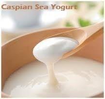 """O Caspian Sea Yogurt (yogurt do Mar Caspio) é um tipo de iogurte infinito, nele não há grãos visíveis como no kefir, as bactérias lacteas(estreptococos cremoris nome científico Lactococcus lactis subespécie cremoris como o componente principal; Gluconobacter Bacillus, Lactobacillus Lactobacillus, de levedura) estão misturadas no yogurt. Este fungo, tem o hábito de liberar a """"goma"""" em torno das bactérias ao começar a fermentação do ácido láctico, este material viscoso dá uma textura única ao…"""