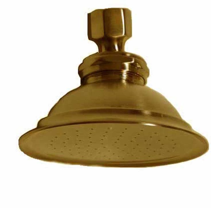 SUPERCOAT BRASS SHOWER HEAD| Strom Plumbing by Sign of the Crab