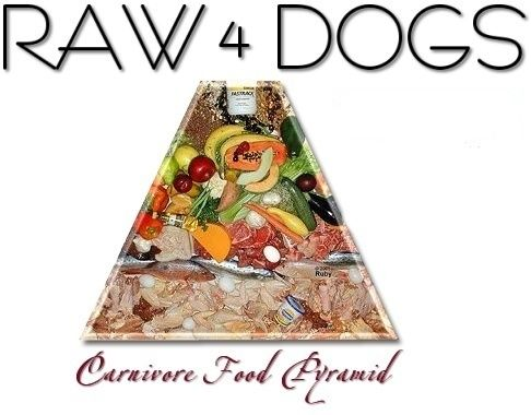 Raw4Dogs - Calculate how much to feed home cooked dog food