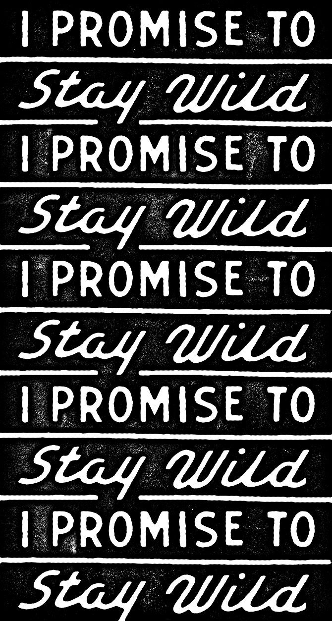 ☮ American Hippie Quotes ~ Stay Wild