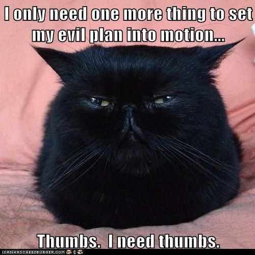 So glad cats don't have thumbs...