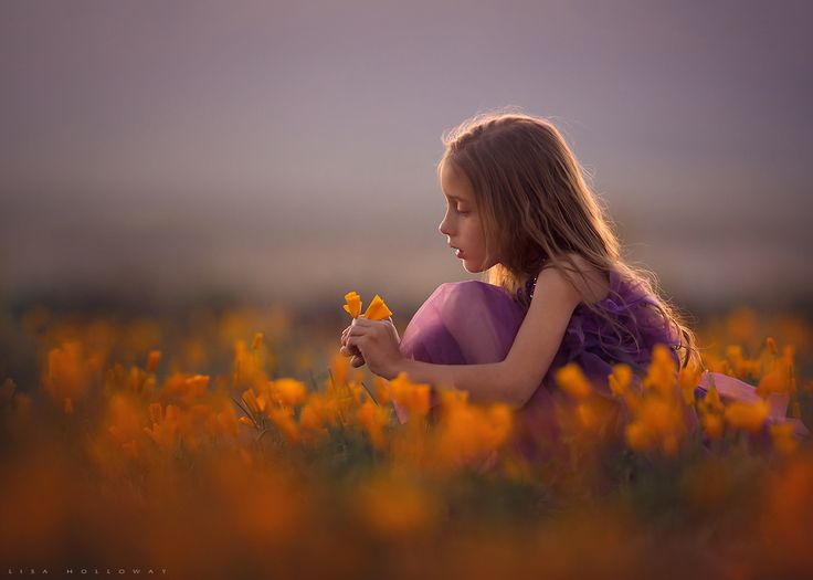 Photograph illuminated by lisa holloway on