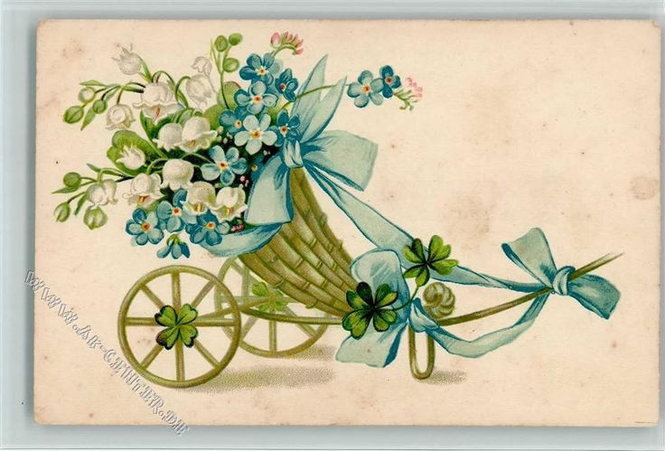 pin on antique forget me not postcards