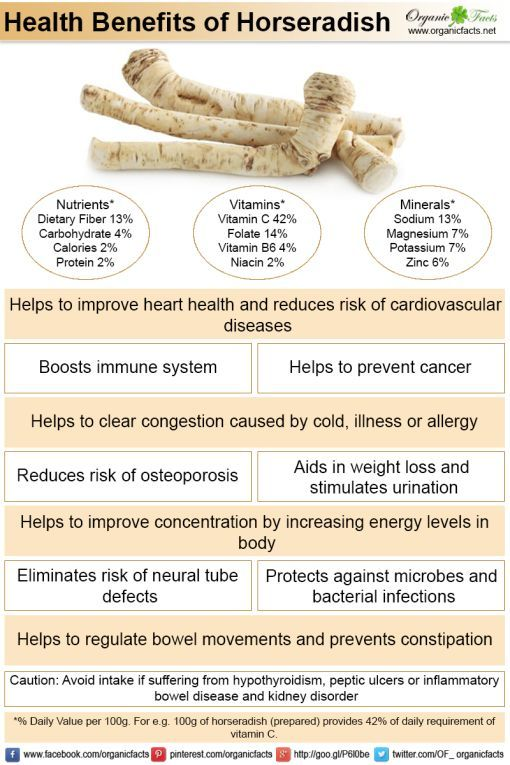 Horseradish can aid weight loss, lower blood pressure, alleviate respiratory conditions, build strong bones, improve immune system health, stimulate healthy digestion, promote heart health, and lower the chances of neural tube defects in infants. Perhaps most notably, horseradish can prevent cancer, due to its extremely high levels of glucosinolates.