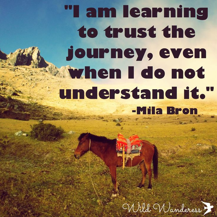 Learn To Trust Quotes: 29 Best Images About Travel Quotes On Pinterest