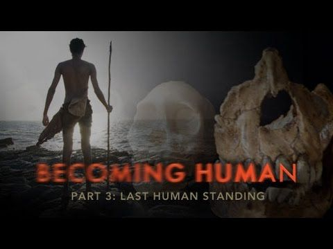 Evolution Of Modern Humans Documentary 2017 FULL HD NEW - YouTube