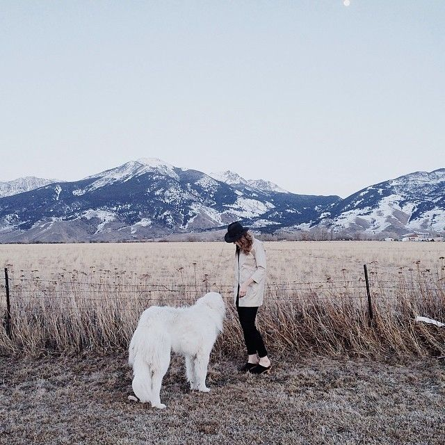 I want to travel everywhere with Nora and take awesome pictures like this. ...or live here!