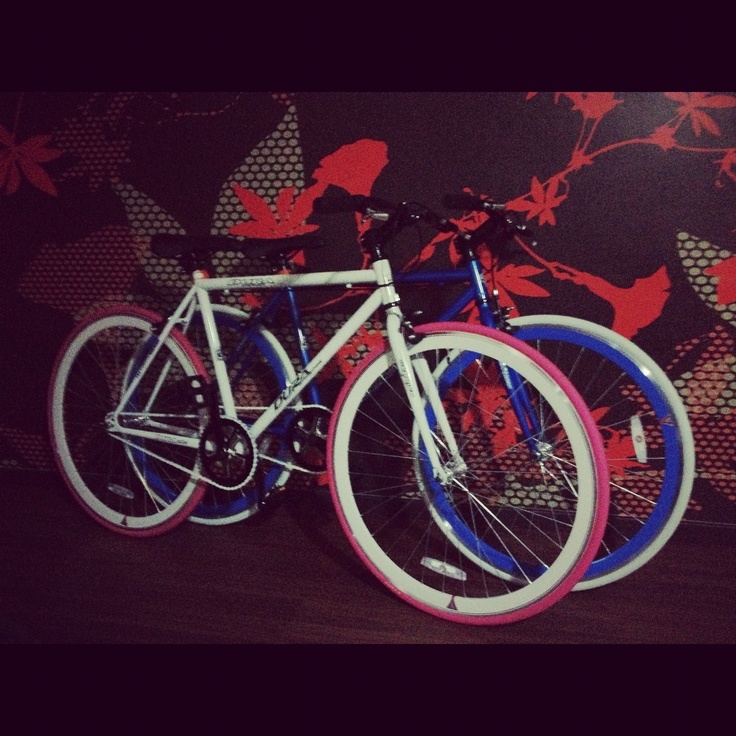 Our fixies!
