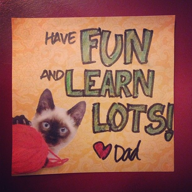 Post it note daily lunchbox notes from Dad to Kendall Photo by vickeyweiss