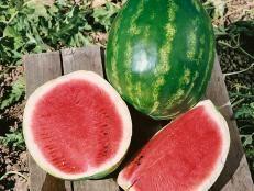 recipe: can you eat frozen watermelon [39]