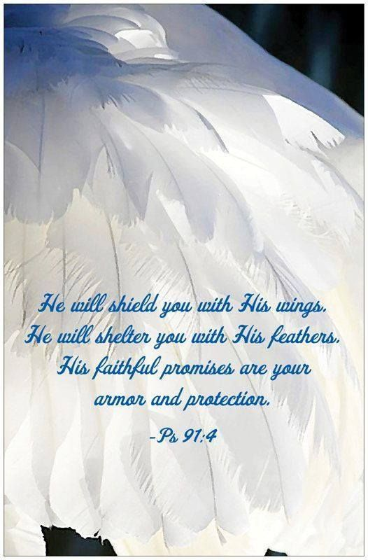 PSALM  91:4 -  He will cover you with his feathers,  and under his wings you will find refuge;  His faithfulness will be your shield and rampart.