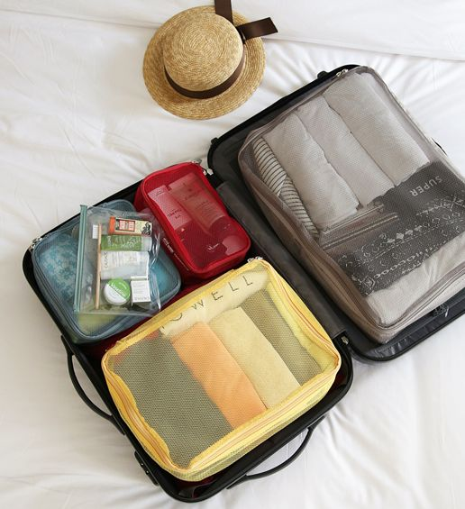 MochiThings.com: Large Luggage Mesh Bag