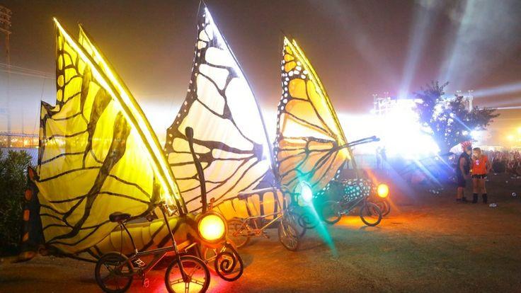 Austin Bike Zoo butterfly bikes!