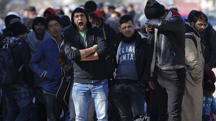 Bevándorlók helyett rendőrök ültek a kiutasítottak repülőjén - https://www.hirmagazin.eu/bevandorlok-helyett-rendorok-ultek-a-kiutasitottak-repulojen