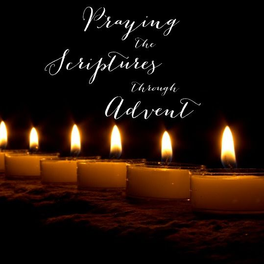 47 best christmas images on pinterest christmas diy christmas jesus light of the world praying the scriptures through advent an advent fandeluxe Gallery