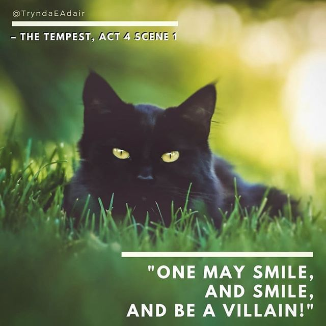 """""""One may smile and smile and be a villain!.""""  #Hamlet Act 1 scene 5. #ShakespeareSunday photo by #AndrewBranch  #WilliamShakespeareQuote  #WilliamShakespeare #TheBard #playQuote - https://www.instagram.com/p/BfVxy5rBwDq/"""
