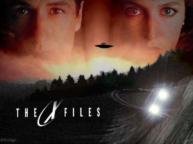 Bedtime was 5 minutes before The X Files went on so mom could watch it :P: The X File, Google Search, Science Fiction, Tv Series, Movie, David Duchovny, Foxes, The 90S, Xfile