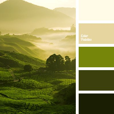 colors of dawn, dark green, light green, marsh, off green, off yellow, selection of color, selection of colors, shades of green, warm shades, yellow beige.