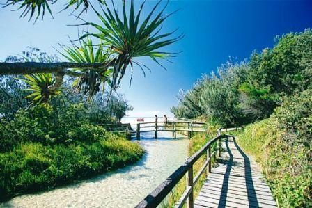 Eli Creek, Fraser Island, Australia. God -- what magical memories. Most pristine water on earth.