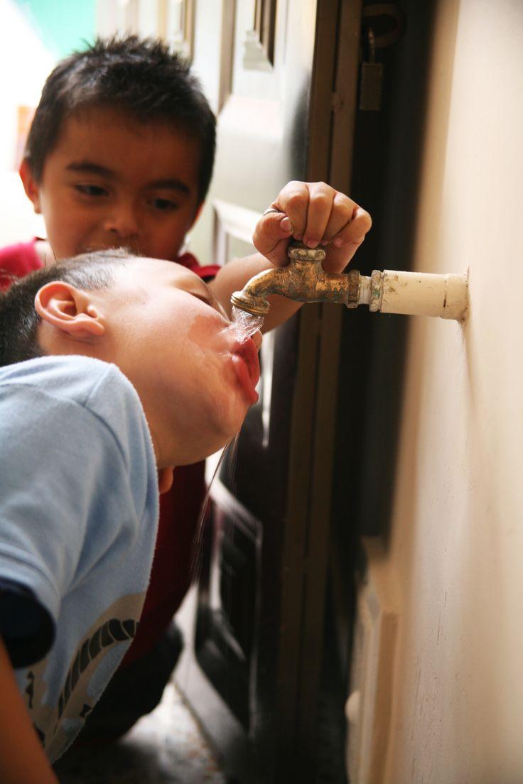Los virus en el agua: un problema ético y legal