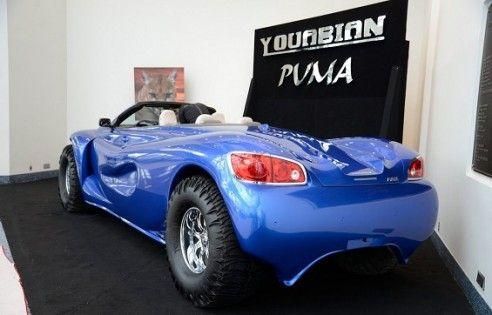 أقبح سيارة بالتاريخ معروضة للبيع بـ895 ألف دولار(صور)