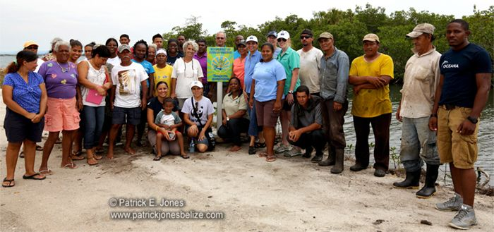 Volunteers plant mangrove in Placencia village Posted on Monday, June 2nd, 2014