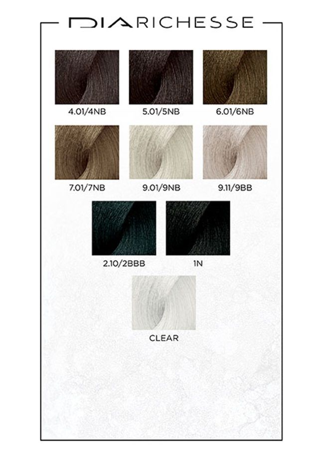 Dia Richesse Swatches Transition To Gray Hair Silver Hair Color