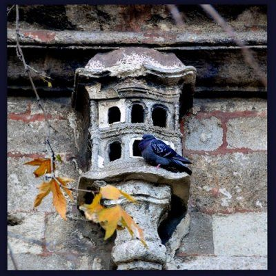 Medeniyet İnşasında Tarihi Tecrübe: Bizleştirmek - http://www.turkyorum.com/medeniyet-insasinda-tarihi-tecrube-bizlestirmek