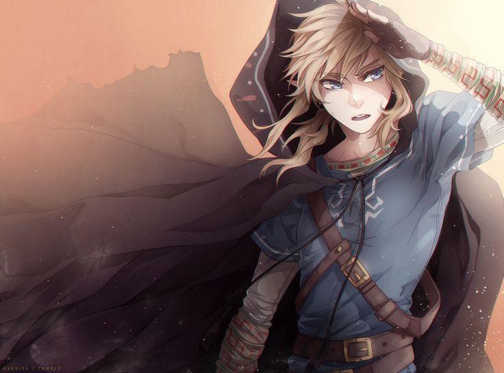 The Legend of Zelda Wii U, Link / Link/#1749395 - Zerochan