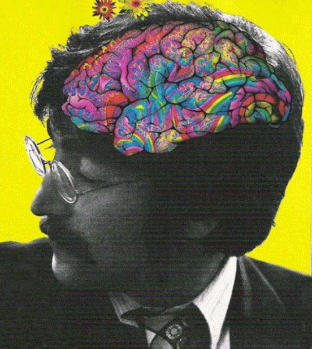 """Psychedelics are illegal not because a loving Government is concerned that you might jump out a third story window. Psychedelics are illegal because they dissolve opinion structures and culturally laid down models of behaviour & information processing. They open you up to the possibility that everything you know is wrong."""