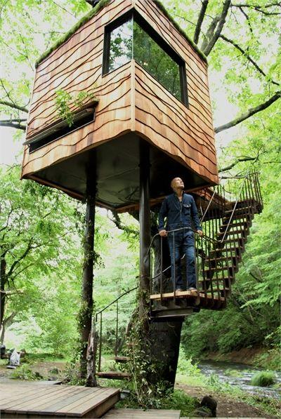 cabane design dans les arbres- 20 inspirations exquises                                                                                                                                                                                 Plus