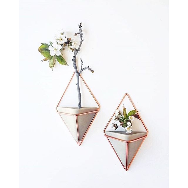 Summer Is Here And So Are These Lovely Wall Plants. Umbra Trigg Wall Vessel  In Concrete And Copper.