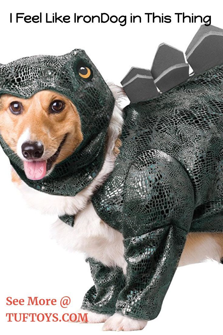 Funny Dog Costumes Dog Costumes Smart Dog Toys Funny Dogs