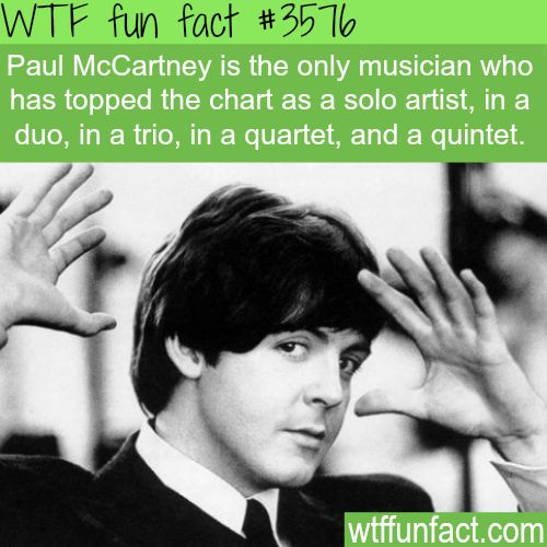WTF=Well, That's Fascinating (is my own abbreviation interpretation of WTF) Paul McCartney facts - WTF fun facts