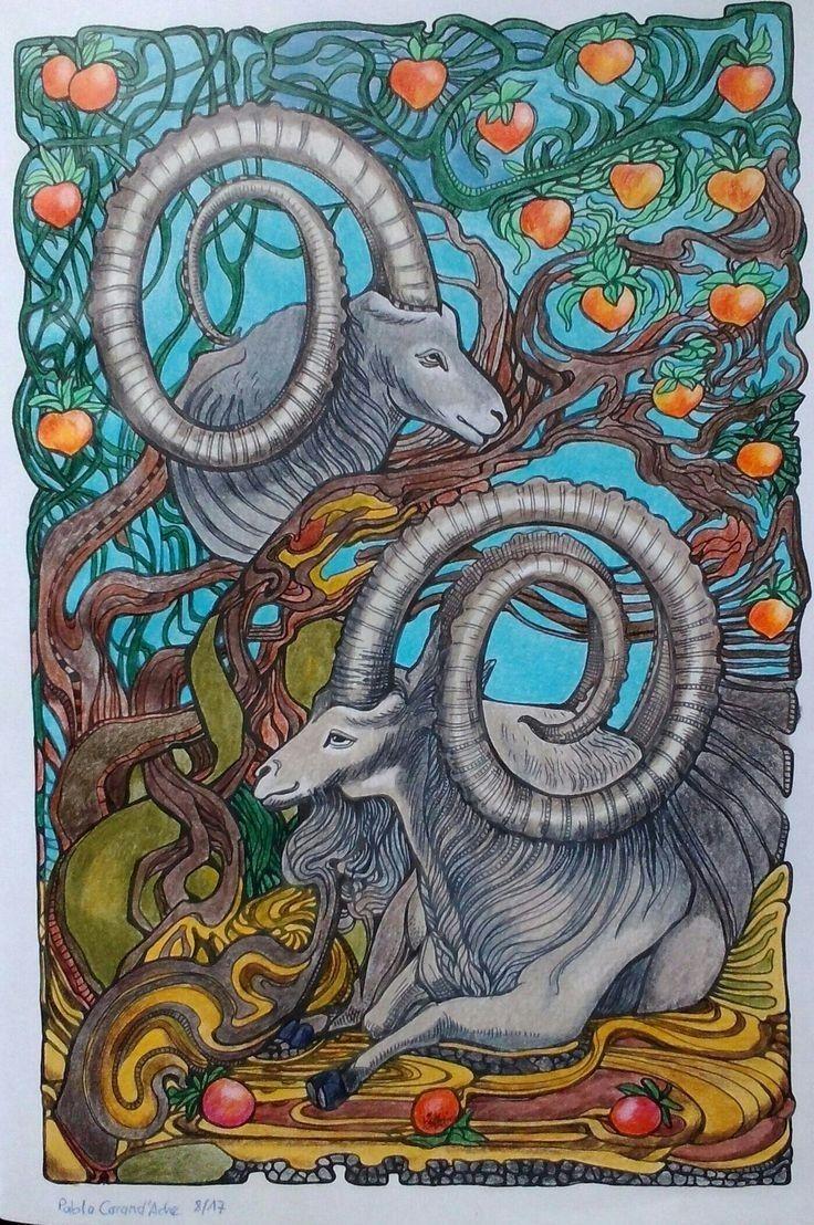 Irina Vinnik Coloring Saxiba Kleurplaten