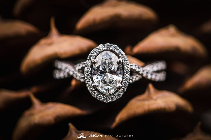 Beautiful wedding ring on a pinecone.