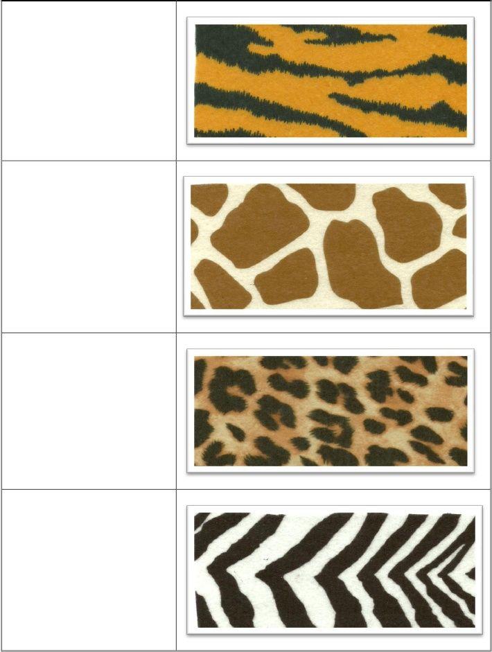 Zoo Animal Prints Printables