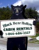 TN Cabin Rentals | Black Bear Hollows Creek Cabin TN Suggested by a friend, just south of Knoxville