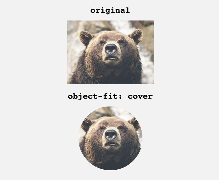 to crop an image with one css line css css3 tuto