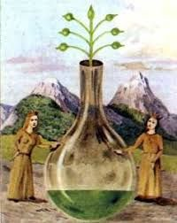 Risultati immagini per vaso anima alchimia