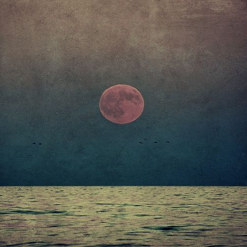 .: Pink Pink Pink, Red Moon, Moon, Sunsets, Colors, Sea, Pink Moon, Photo, The Moon