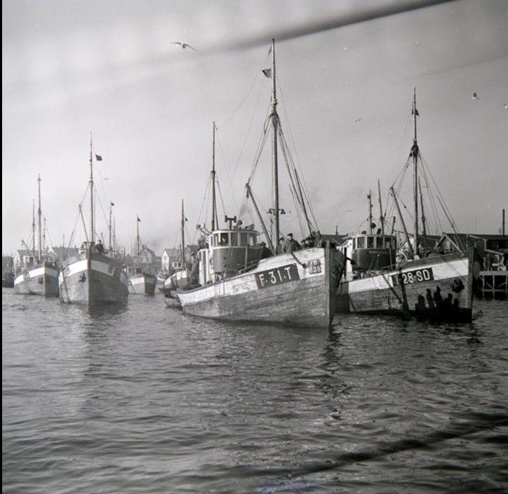 Lofotfiske
