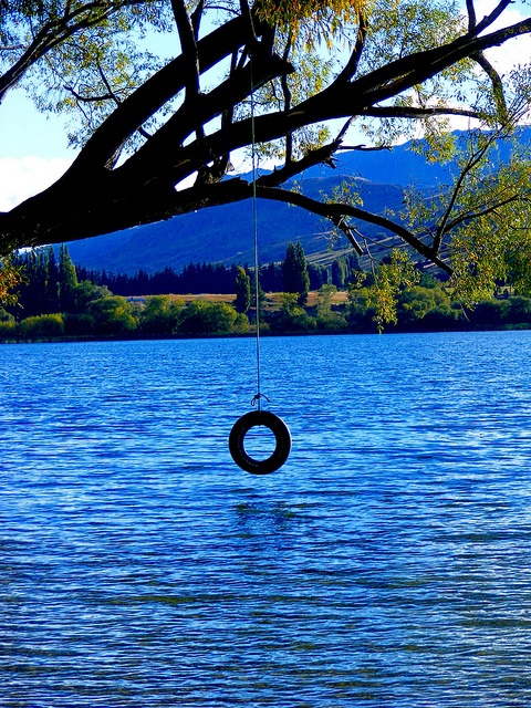 tire swing jumping into the lake