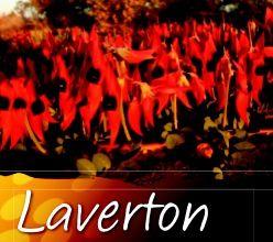 Laverton