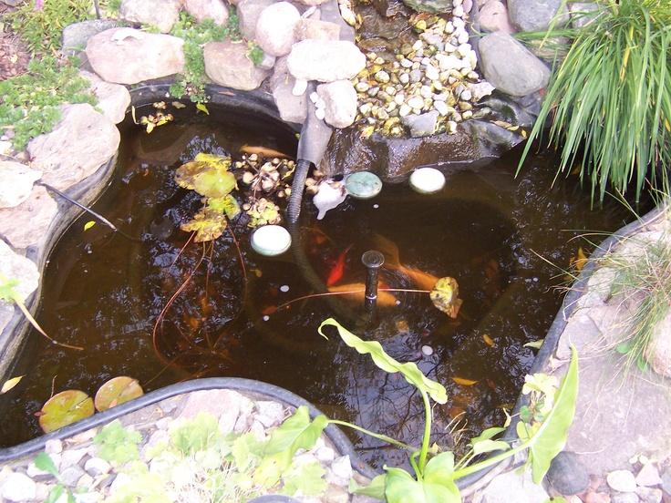 25 Best Ponds Images On Pinterest Accessories Garden