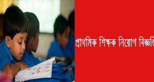 Primary School Teacher Vacancy