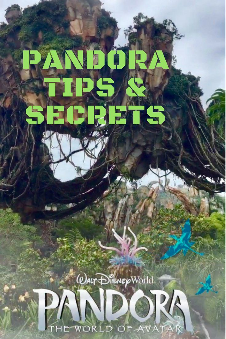 Tips & Secrets to Visit Pandora at Disney's Animal Kingdom