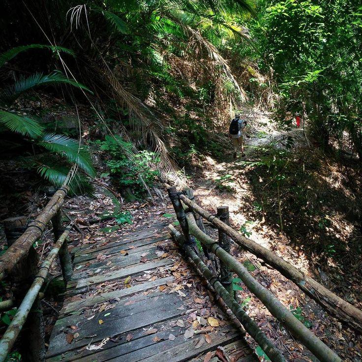Welcome to the jungle! @pangkorlautresort  one island one resort.