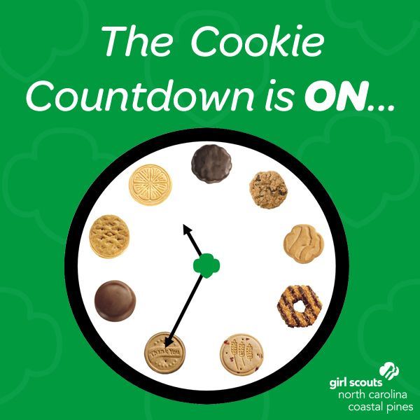 17 best images about girl scouts on pinterest girl